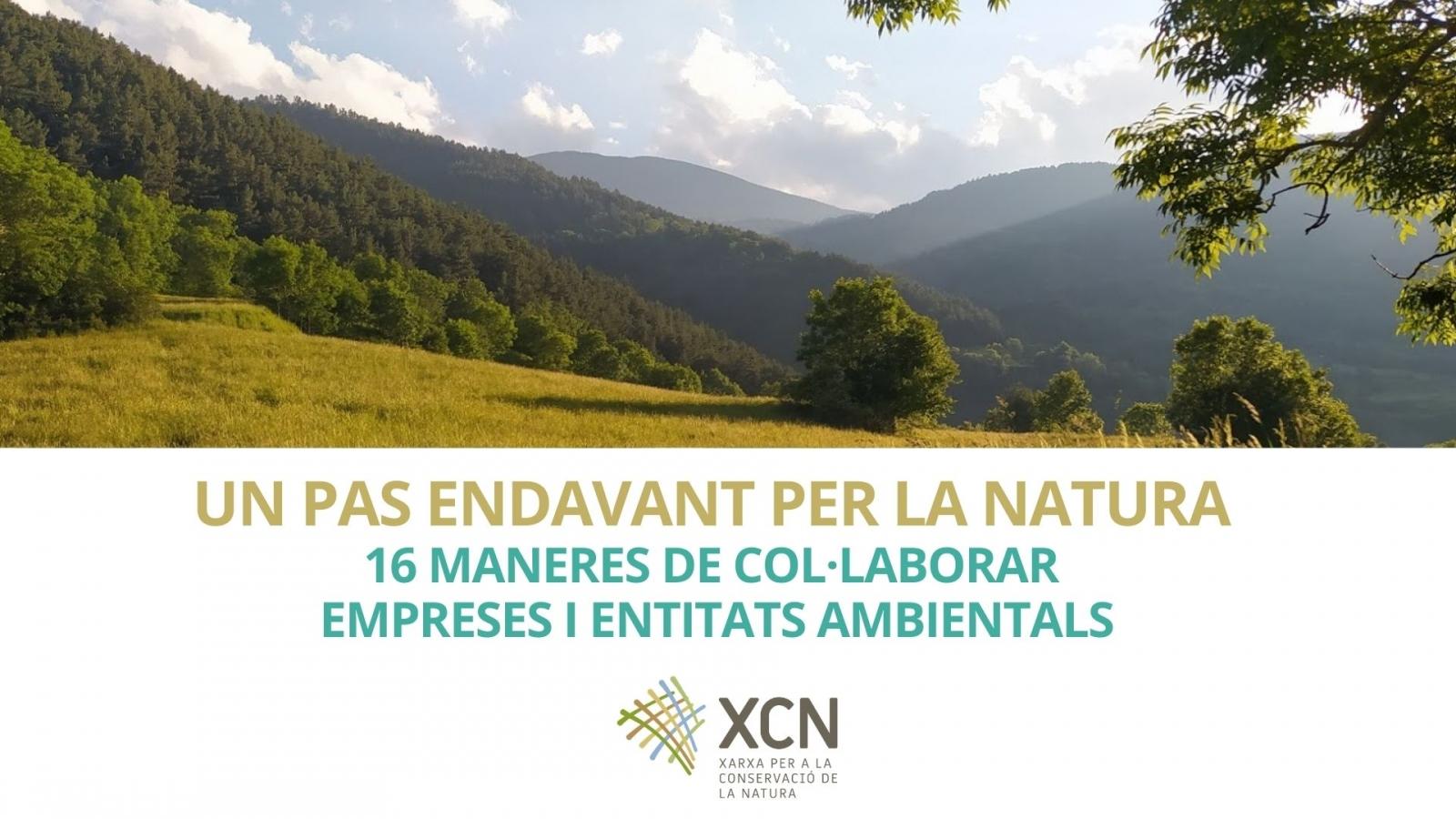 Un pas endavant per la natura :16 maneres de col·laborar empreses i entitats ambientals